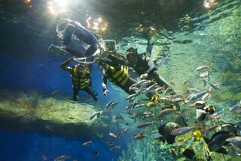 Snorkeling_03