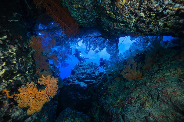 41636358 - cave diving
