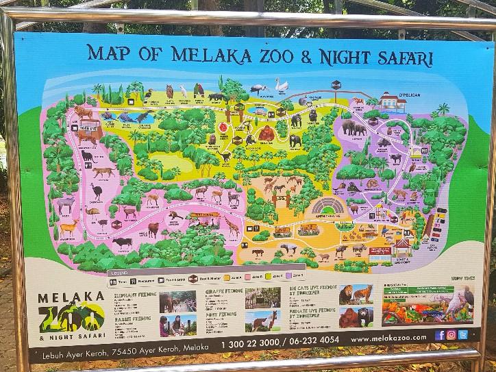 Melaka Zoo and Night Safari Melaka Live Life Lah