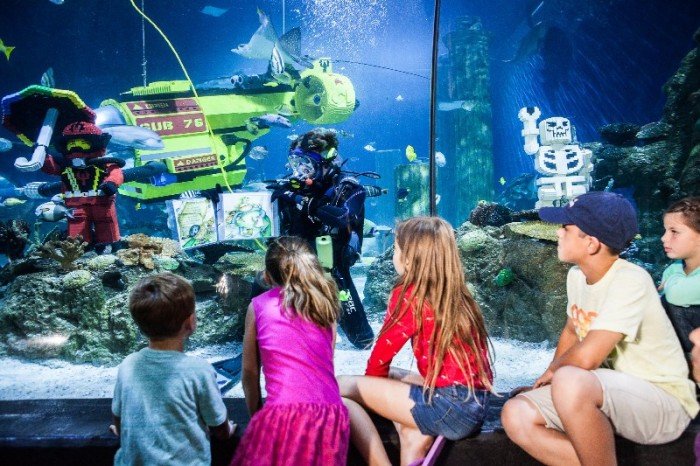 SEA LIFE Malaysia - Aquarium features workshops and activities that are both fun and educational for-800x533