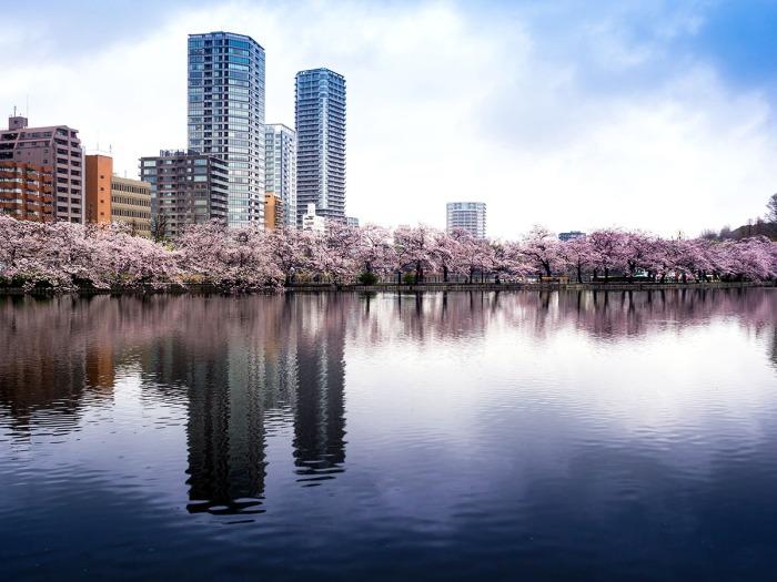 Where-to-stay_Tokyo_Ueno-Taito_Ueno-Zoo_Ueno-Park.jpg