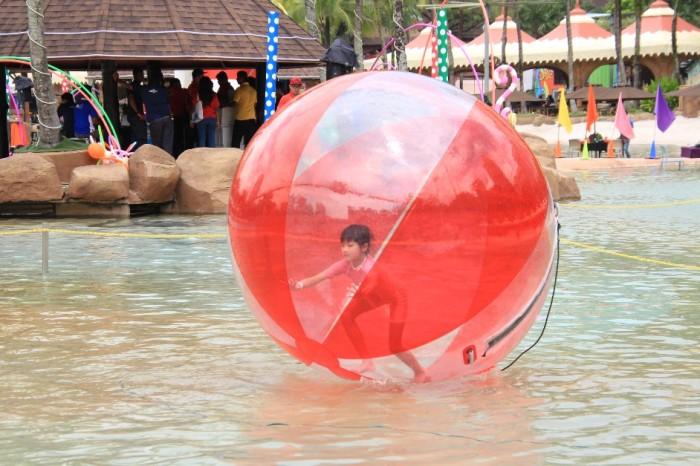 Water Zorb Balls-942x628